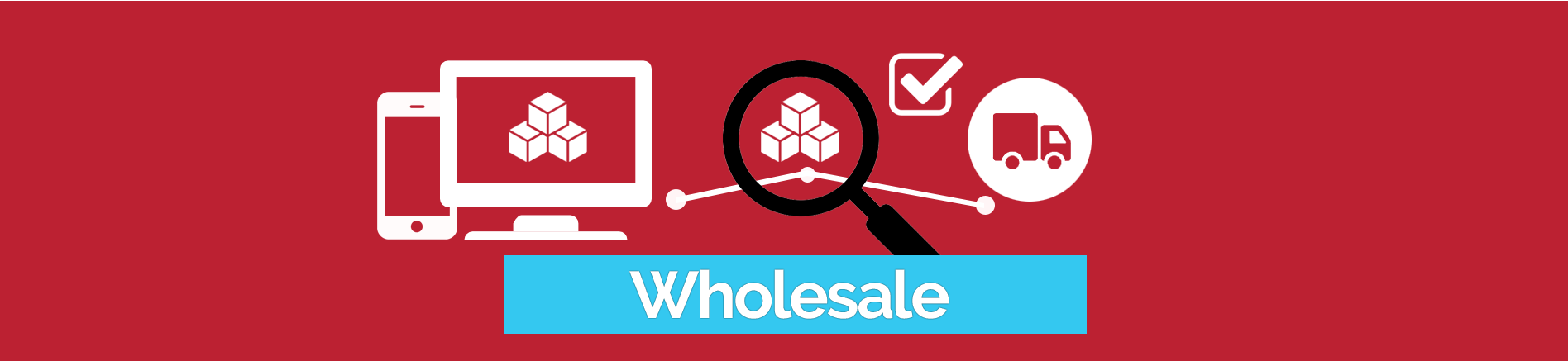 wholesale ecommerce solutions