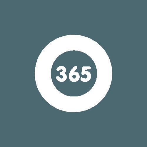 365 SEO