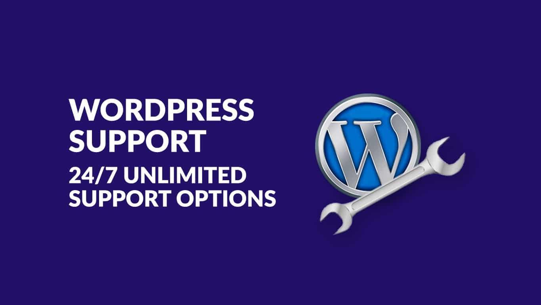 wordpress support 247